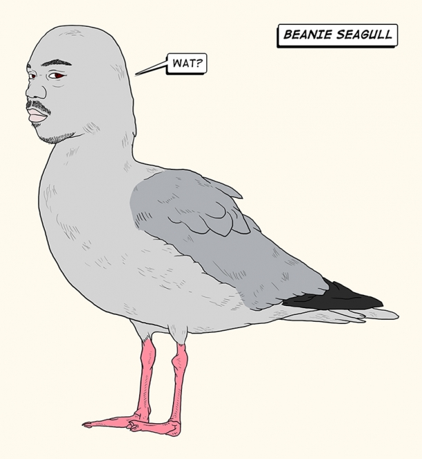 http://www.chocolateninja.net/files/gimgs/th-135_BEANIE_SEAGULL_004.jpg